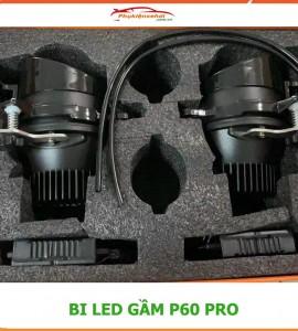 Bi gầm Led P60 Pro 3000K (2 chế độ Pha/Cos)